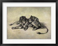 Big Cats III Framed Print