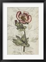 Keepsake Floral I Framed Print