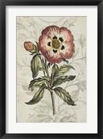 Keepsake Floral II Framed Print
