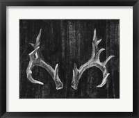 Rustic Antlers I Framed Print