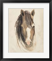 Watercolor Animal Study V Framed Print