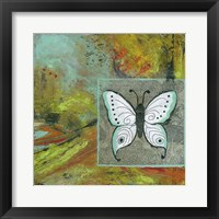 Framed Butterflies Are Free