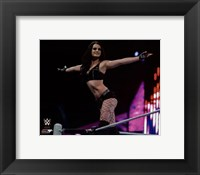 Framed Paige 2014 Action
