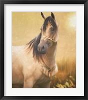 Framed Arabian Gold