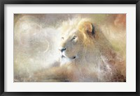Framed Lion Dust of Dreams