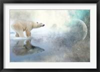 Framed Polar King