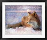 Framed Winter Fox