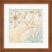 Framed Nautical Shells I