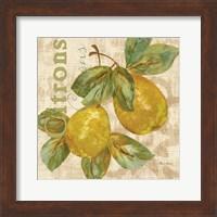 Framed Rustic Fruit III