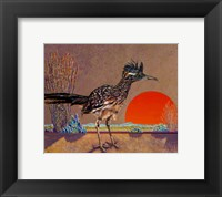 Framed Roadrunner in the Evening