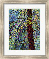 Framed Pine Sprites