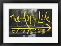 Framed Aim of Life