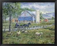 Framed Sheep in a Field