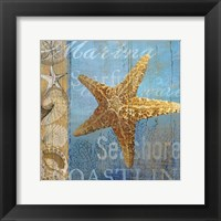 Framed Starfish and sea