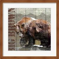 Framed Open Season Bear