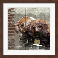 Framed Open Season Bear