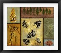 Framed Pines and Oak I
