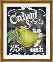 Framed Orchard Selects