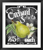 Orchard Selects Framed Print