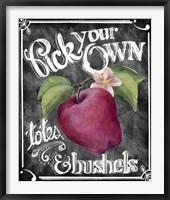 Framed Pick Your Own