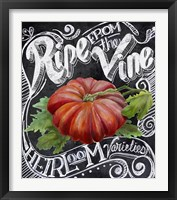 Chalkboard Tomato Framed Print