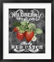 Framed Wildberry Fields