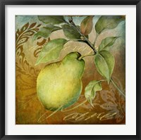 Framed From The Grove Pear