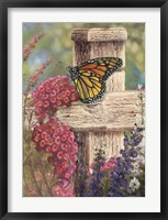 Framed Butterfly and Fence Cross