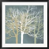 Framed Tranquil Trees