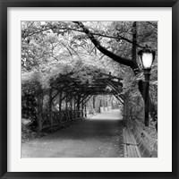 Framed Central Park Pergola