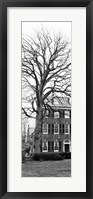 Framed Tree with House