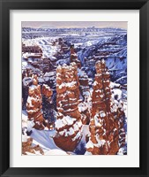 Framed Turned to Stone Bryce