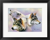 Framed Wolves are Forever