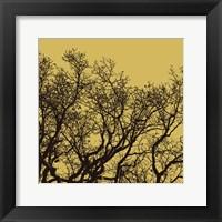 Rejoice II Framed Print