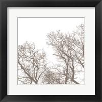 Majesty I Framed Print