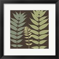 Framed Field Botanical