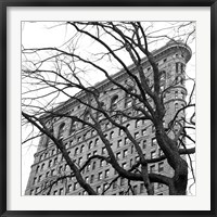 Framed Flatiron with Tree (b/w) (detail)