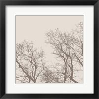 Majesty I (beige) Framed Print