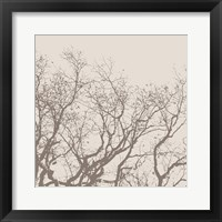 Majesty II  (beige) Framed Print