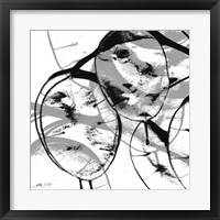 Silver Dollars VII Framed Print