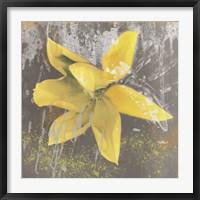 Framed Tulip Fresco (yellow)