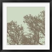 Winter Tree I Framed Print