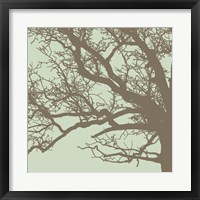 Winter Tree III Framed Print