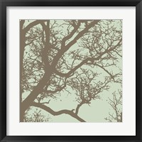 Winter Tree IV Framed Print