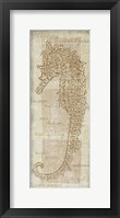 Sea Horse Framed Print