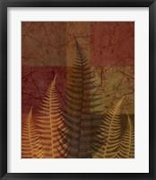 Framed Ferns II