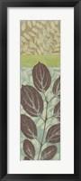 Leaves I Framed Print