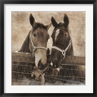 Framed Trio Vintage