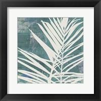 Framed Fronds on Azure