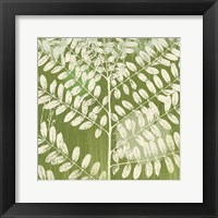Framed Jade Foliage